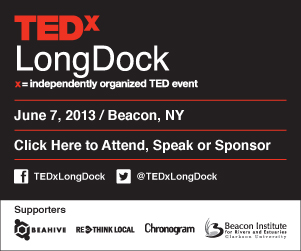 TEDxLongDock_Chronogram_300x250