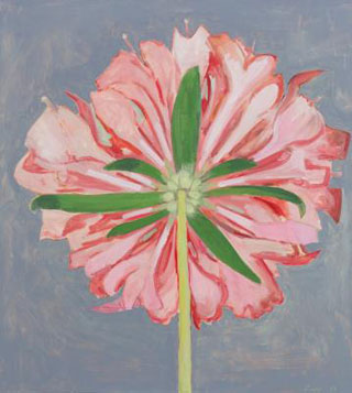 "Lois Dodd, ""Pink Scabiosa, Back View"" (2013), oil on panel, 20 x 18.25 in (image courtesy Alexandre Gallery)"