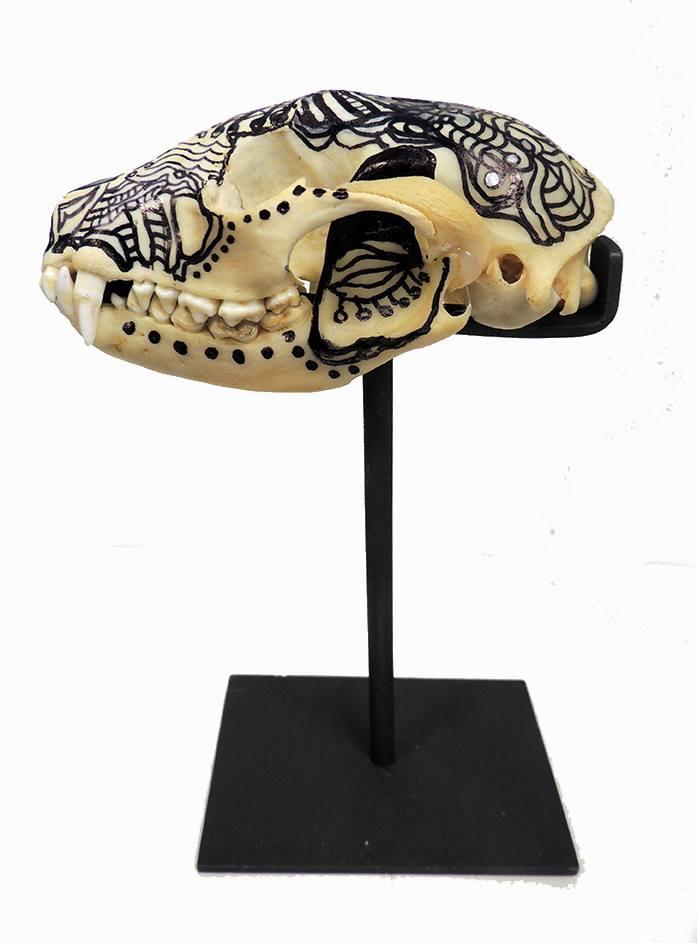 Raccoon Skull [2014] hand painted skull w/permanent inks Elisa Pritzker