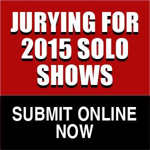 2014-solo-show-widget