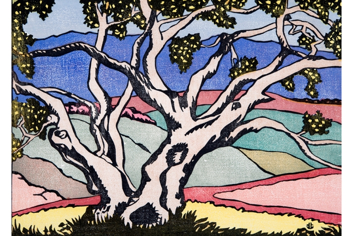 The Sycamore Tree Anders Gustave Aldrin