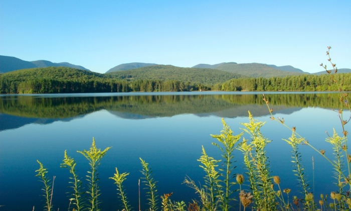 The serene waters of Cooper lake, near Woodstock, in the Catskill Mountains. Photograph: Alamy